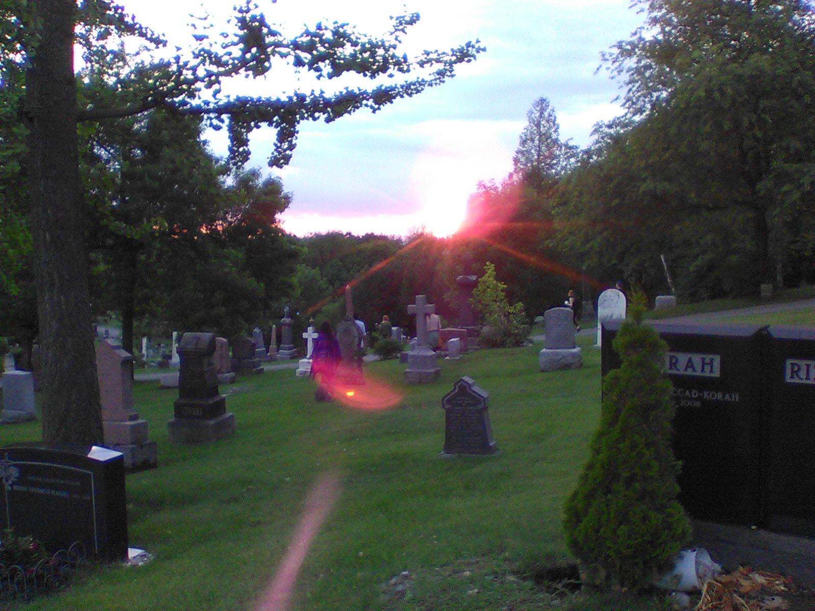 Marche au cimetière Mt-Royal_crédit photo Ève Marie Langevin 010